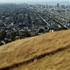 Bernal Heights Dog Play Areas
