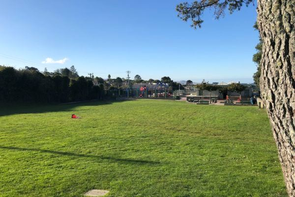 Plenty of Space to Play at West Portal Grass Area
