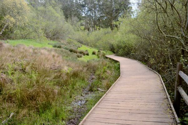 Creeks to Peaks Boardwalk