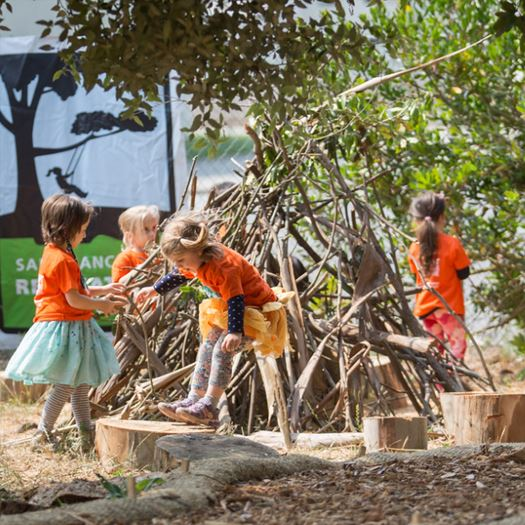 Kids building a shelter out of sticks