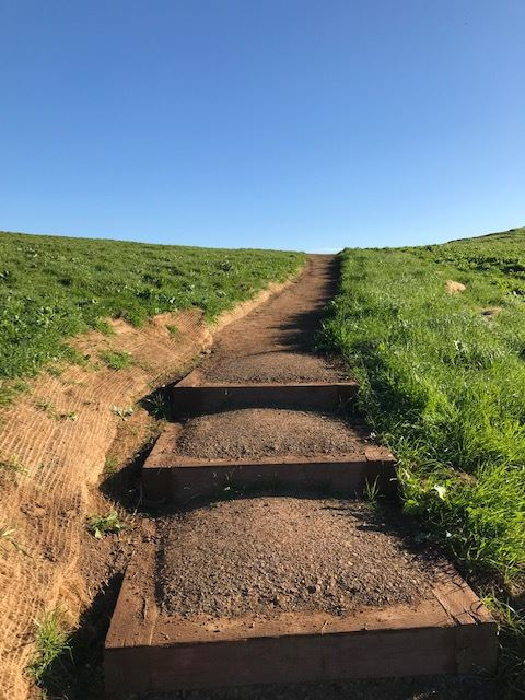 View of Box Steps Up Bernal Hill