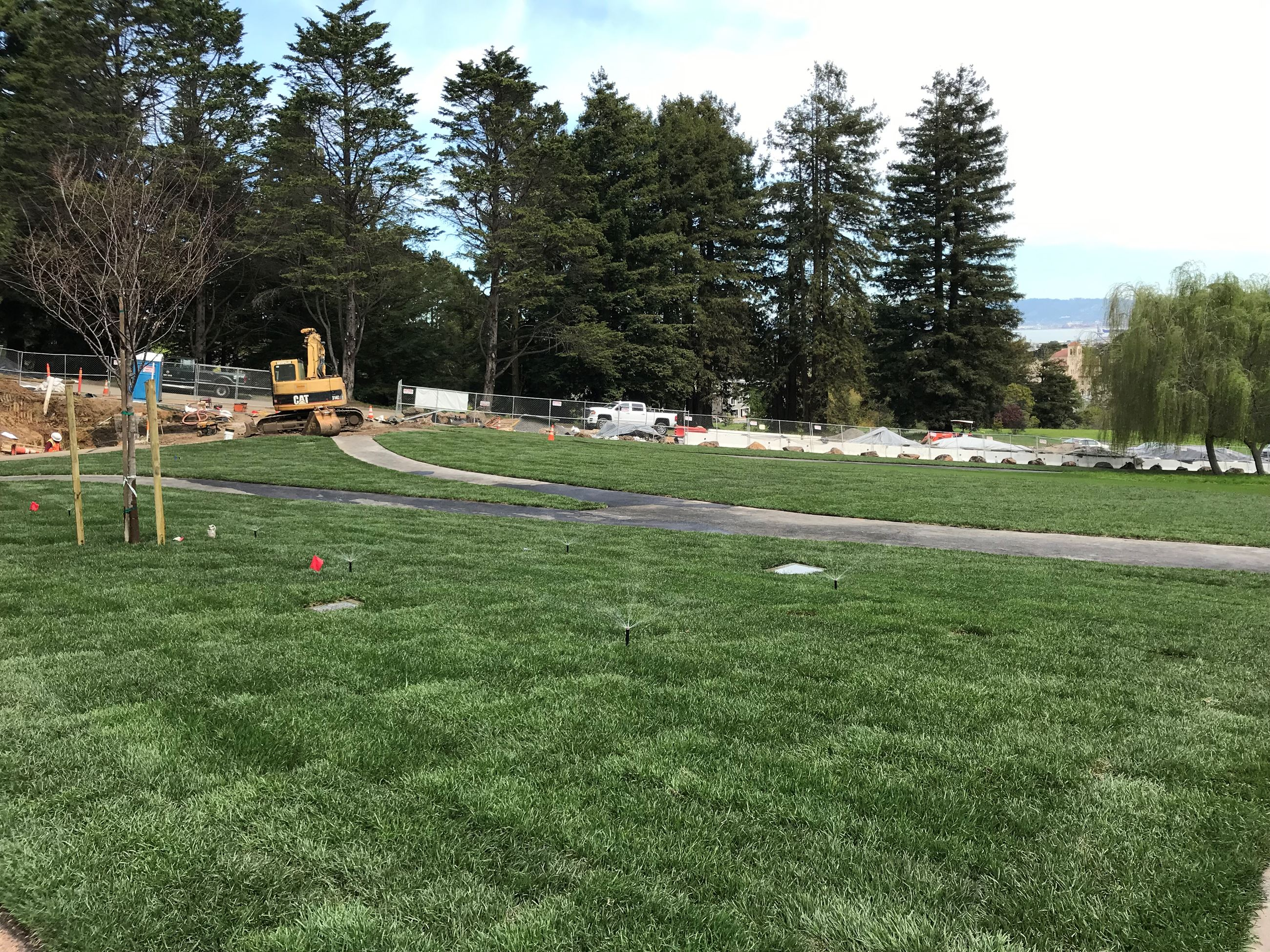 In the foreground is the newly installed lawn area. In the background is the picnic area showing a p