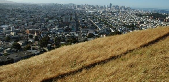 Bernal Heights Park Trail