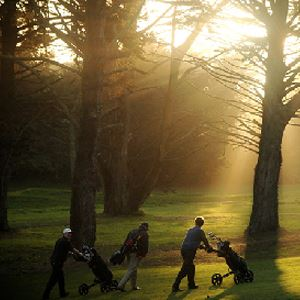 People walking on a golf course with sun shining through the trees