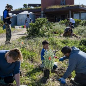 Kids and adults planting and weeding