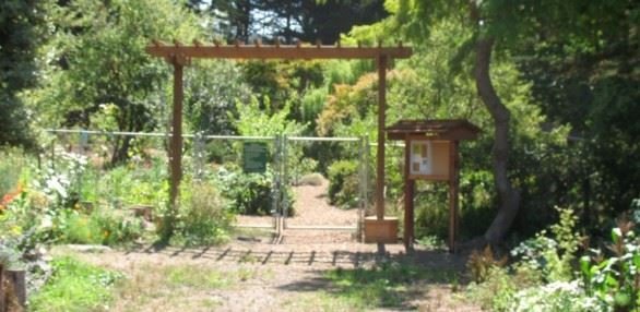 White Crane Springs Community Garden